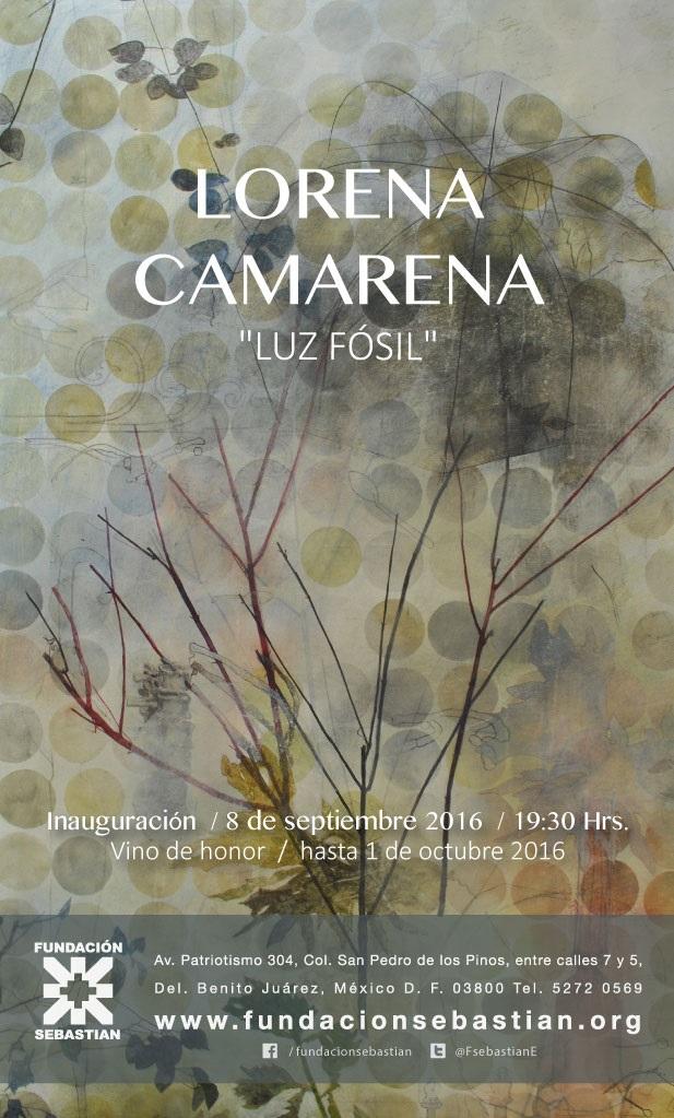 Sebastian - LORENA-CAMARENA-EXPO.jpg